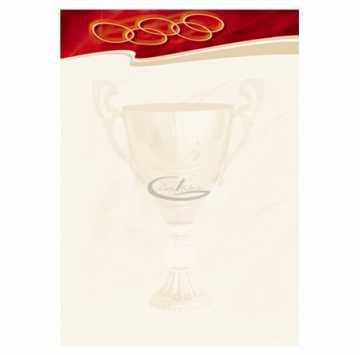 Diplomų popierius A4 170gr. 25 lapai (Sport)